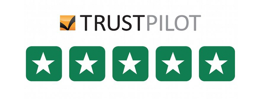 brownSkips.com hits 200 reviews on Trustpilot averaging at 9.4 ...